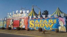 Solidaridad: integrantes del Circo Safari solicitan ayuda, no pueden trabajar por el aislamiento social obligatorio