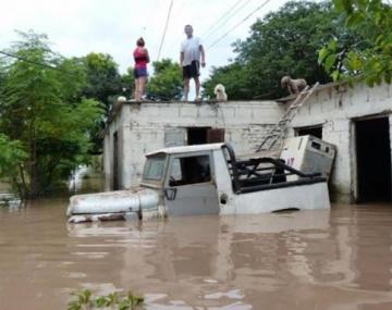 Detrás del drama de las inundaciones, la codicia del desmonte