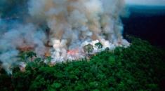El fuego llegó a Bolivia y Perú decretó el alerta por miedo a que se propague